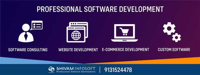 Professional Software Development - Software Company In Raipur Chhattisgarh